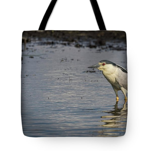 Black-crowned Night Heron 2017-3 Tote Bag