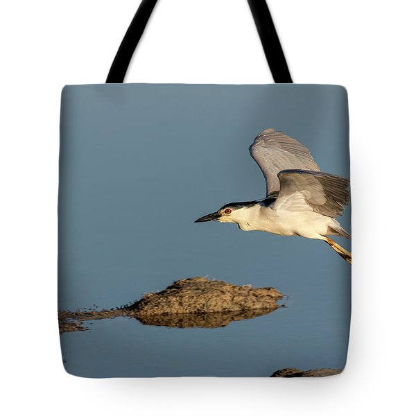 Black-crowned Night Heron 2017-4 Tote Bag
