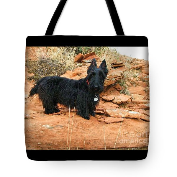 Black Dog Red Rock Tote Bag by Michele Penner