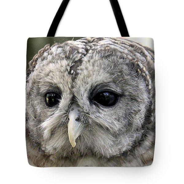 Black Eye Owl Tote Bag