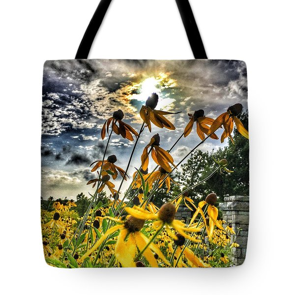 Black Eyed Susan Tote Bag by Sumoflam Photography