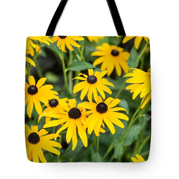 Black-eyed Susan Up Close Tote Bag