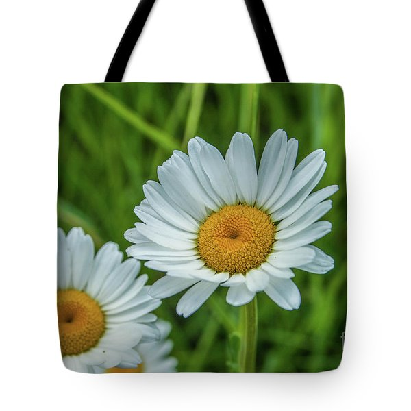 Black-headed Daisy's Tote Bag