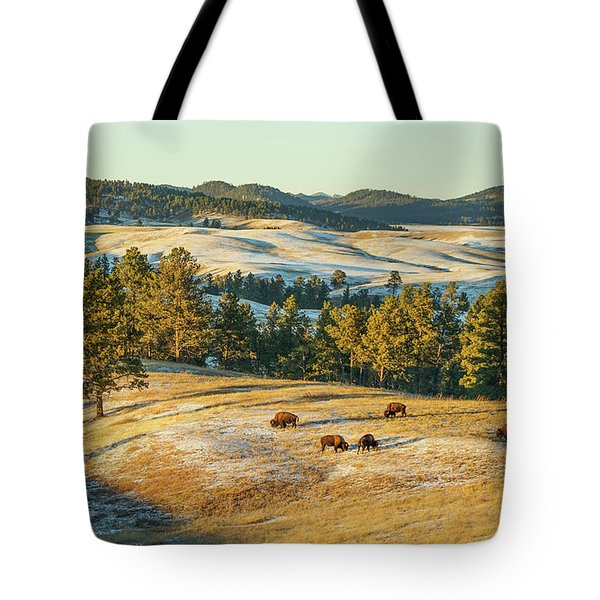 Black Hills Bison Before Sunset Tote Bag by Bill Gabbert