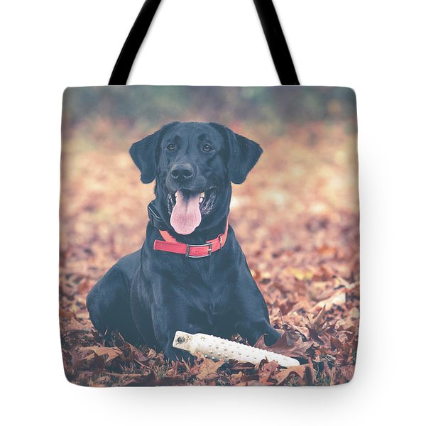 Black Labrador In The Fall Leaves Tote Bag