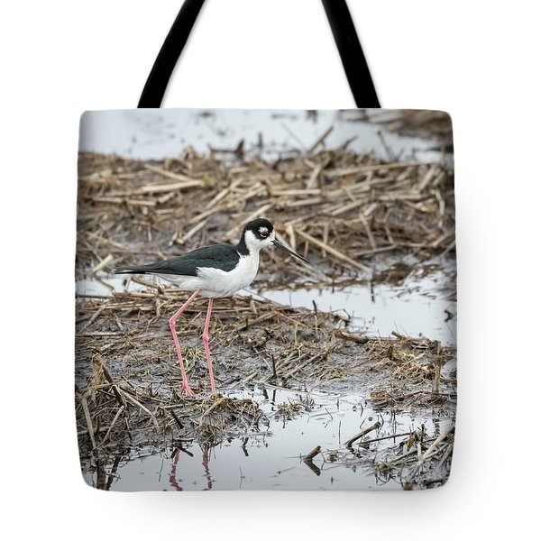 Black-necked Stilt 2017-1 Tote Bag by Thomas Young