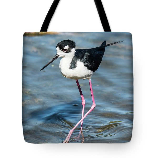 Tote Bag featuring the photograph Black-necked Stilt Shows Legs by Michael D Miller