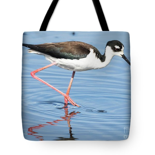 Black-necked Stilt Wading  Tote Bag