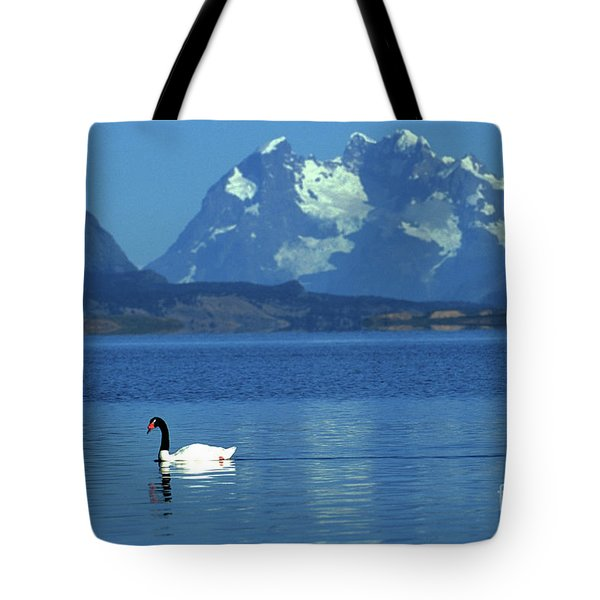 Black Necked Swan On Last Hope Sound Chile Tote Bag