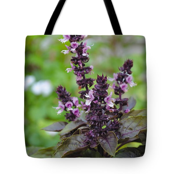 Black Opal Basil Flower Tote Bag by Eva Kaufman