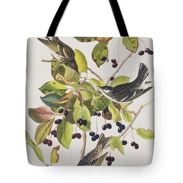 Black Poll Warbler Tote Bag by John James Audubon