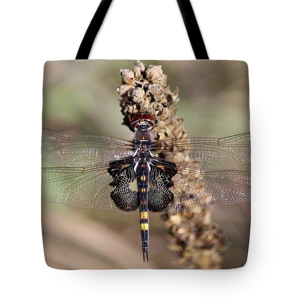 Black Saddlebags Tote Bag
