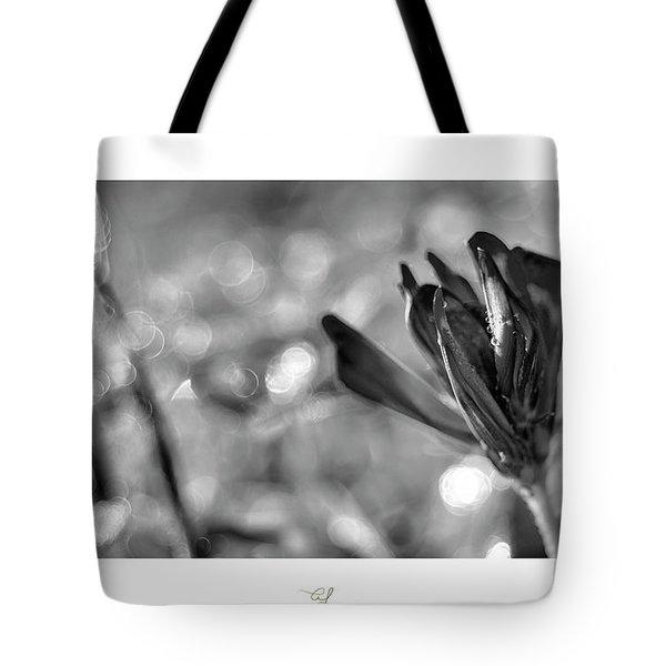 Black Silla Tote Bag