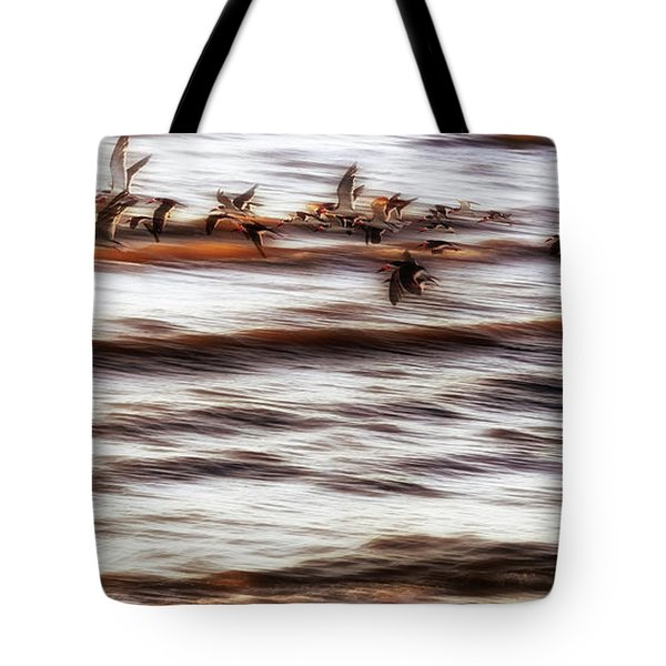 Tote Bag featuring the photograph Black Skimmers Of Long Beach - Mississippi - Birds by Jason Politte