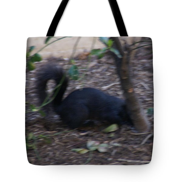Black Squirrel Hiding Tote Bag