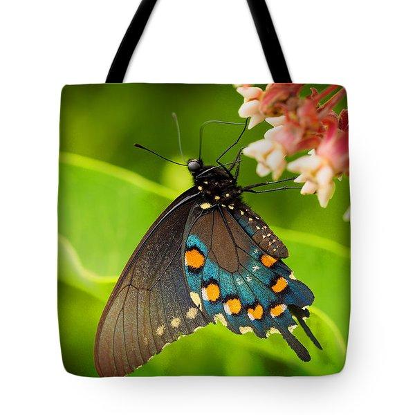 Black Swallowtail #1 Tote Bag