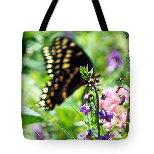 Tote Bag featuring the photograph Black Swallowtail by Chris Mercer