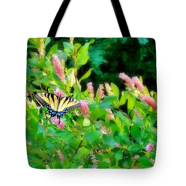 Tote Bag featuring the photograph Black Swallowtail by EDi by Darlene