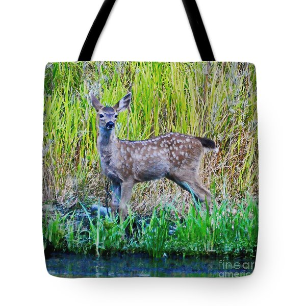 Black Tail Fawn Tote Bag