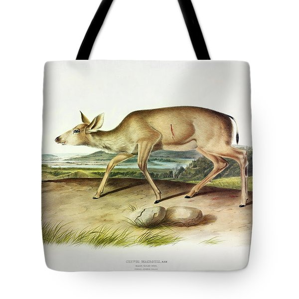 Black-tailed Deer Tote Bag