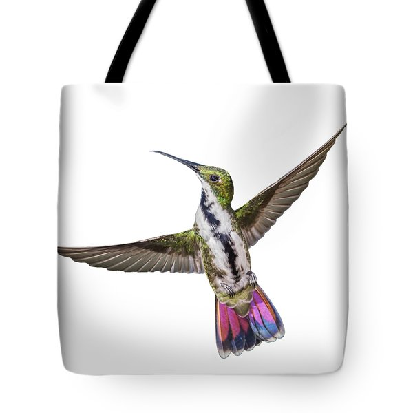 Tote Bag featuring the photograph Black Throated Mango by Rachel Lee Young