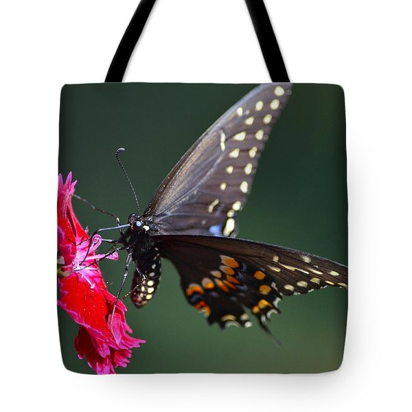 Black Tiger Swallowtail Tote Bag