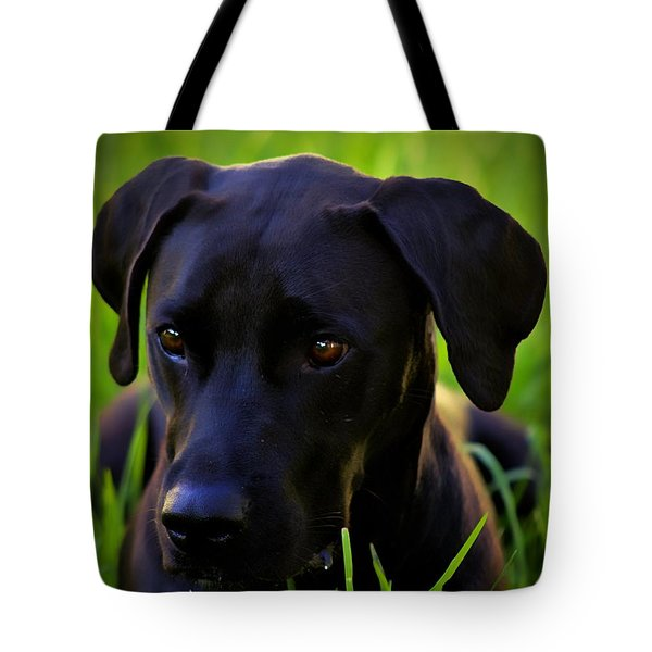 Black Velvet Tote Bag