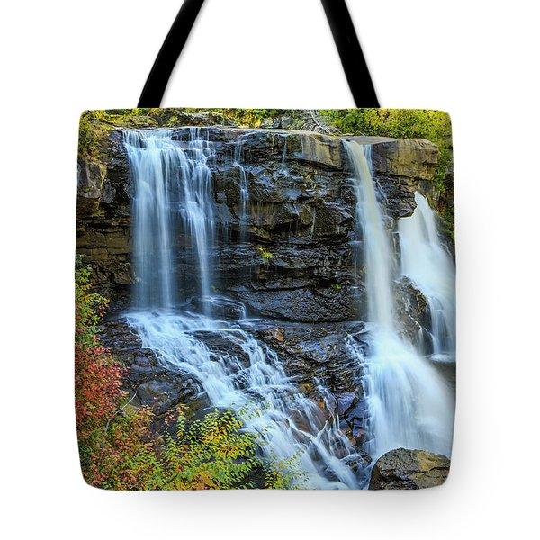 Black Water Falls #3 Tote Bag