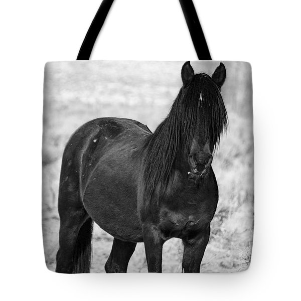 Black Wild Mustang Stallion Tote Bag