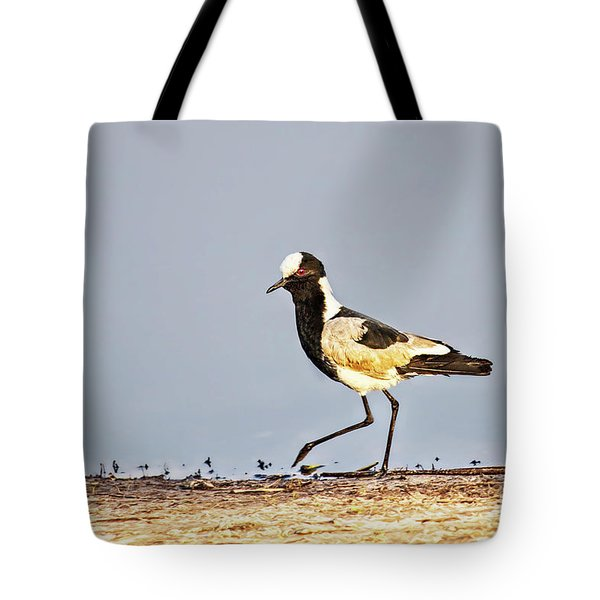 Black-wing Lapwing Tote Bag by Kay Brewer