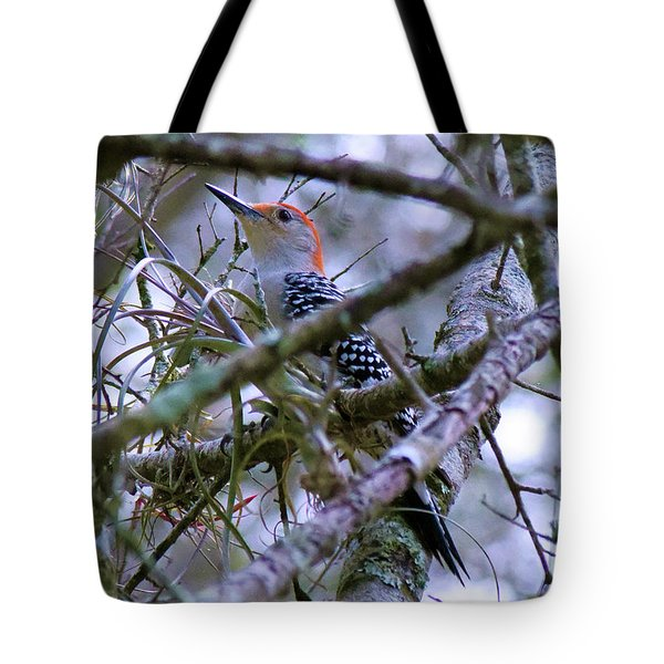 Tote Bag featuring the pyrography Black With White Polka Dotted Jacket by Sally Sperry