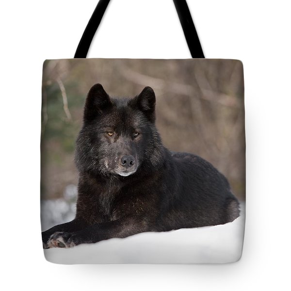 Black Wolf Tote Bag by John Hyde - Printscapes
