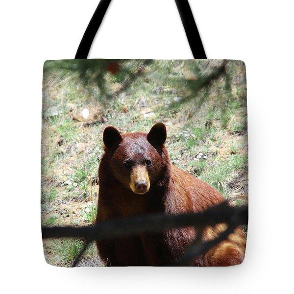 Blackbear1 Tote Bag