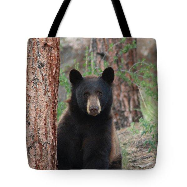 Blackbear2 Tote Bag
