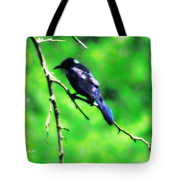 Blackbird Tote Bag by Bill Cannon