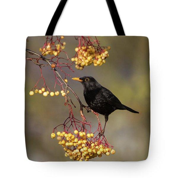 Blackbird Yellow Berries Tote Bag