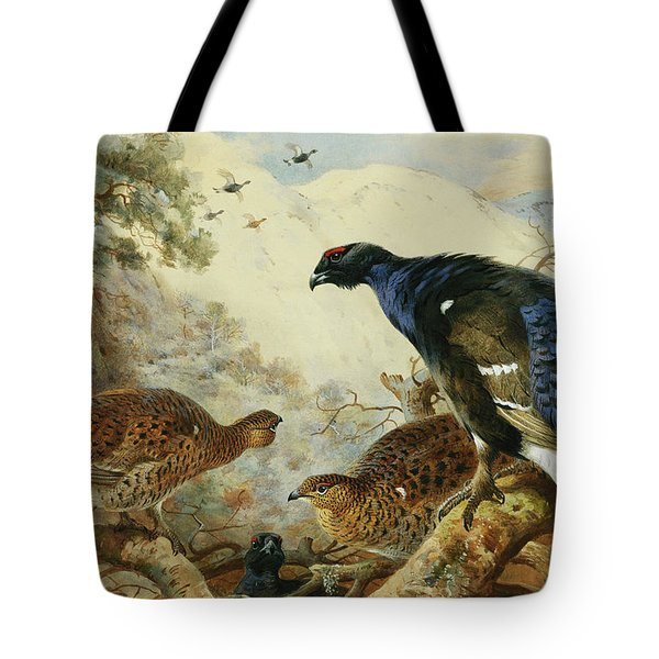 Blackgame Or Black Grouse Tote Bag by Archibald Thorburn