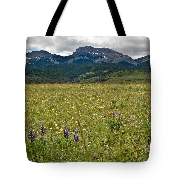 Blackleaf Canyon Tote Bag