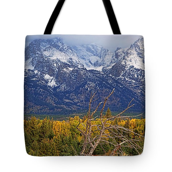 Tote Bag featuring the photograph Blacktail Sunday Morning by Jim Garrison
