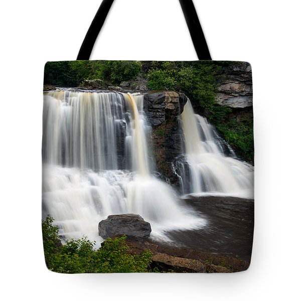 Blackwater Falls State Park West Virginia Tote Bag by Rick Dunnuck