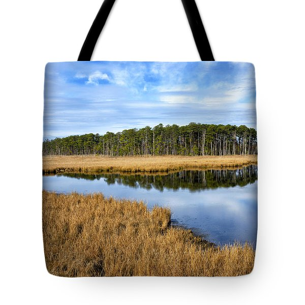 Tote Bag featuring the photograph Blackwater National Wildlife Refuge In Maryland by Brendan Reals