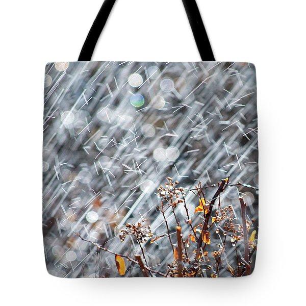 Blame It On The Rain Tote Bag by Lisa Knechtel
