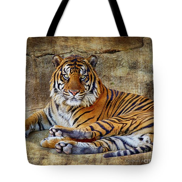 Tote Bag featuring the photograph Blank Stare by Charles McKelroy