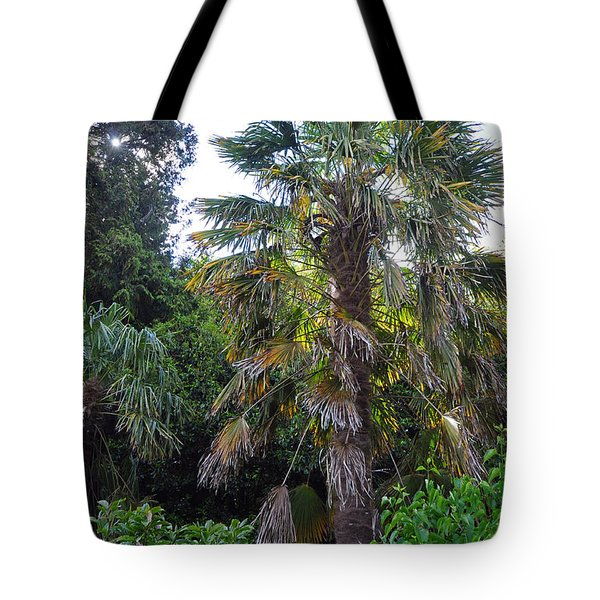 Blarney Castle Grounds Tote Bag