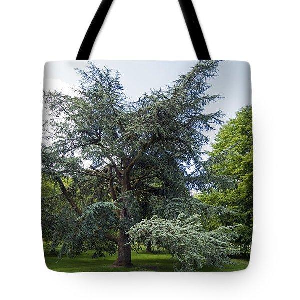 Blarney House Grounds Tote Bag