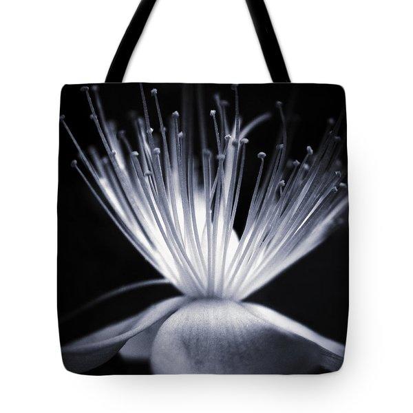 Blaze Tote Bag by Dorit Fuhg