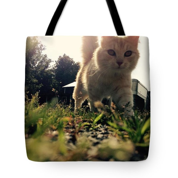 Blaze The Cat Tote Bag by Mary Tron