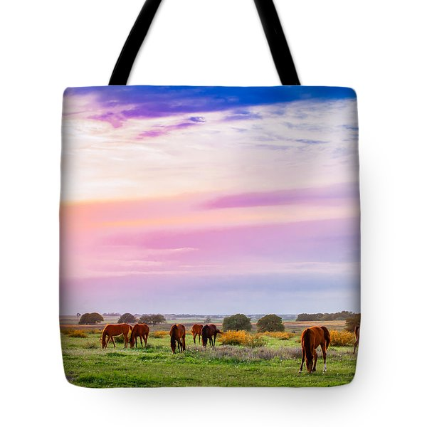 Blazing Sky Diner Tote Bag