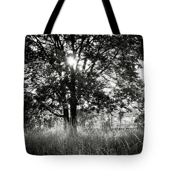 Blazing Tree Tote Bag