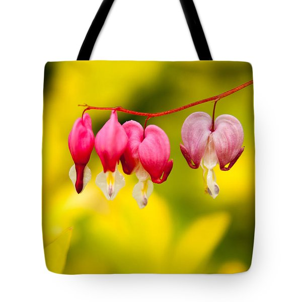 Tote Bag featuring the photograph Bleeding Hearts by Erin Kohlenberg